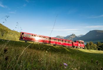 Schafbergbahn | cog railway